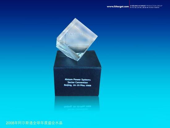 动态-2008阿尔斯通全球年度盛会 (13)