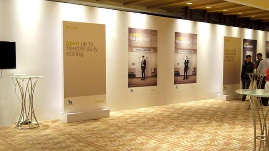 动态-2012年诺和诺德全球年度盛会 (4)