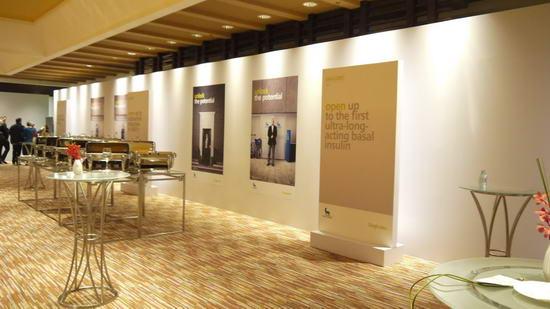 动态-2012年诺和诺德全球年度盛会 (6)